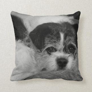 "Add Pet Photo Throw Pillow 16"" x 16"""
