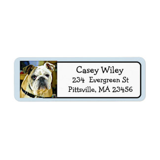 Add your Dog's Photo to this Address Label