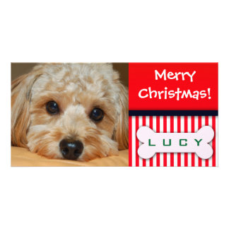 Add your favorite dog photo to this Christmas temp Photo Greeting Card