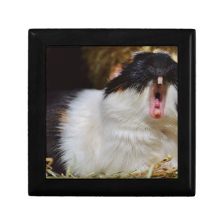 Add Your Own Text Funny Guinea Pig Small Square Gift Box
