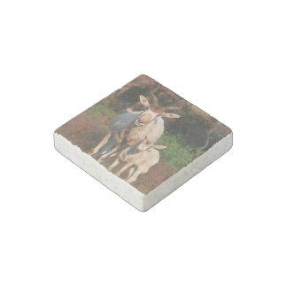 Addax / White Antelope / Screwhorne Antelope Stone Stone Magnet