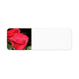 Address Labels - Red Rose