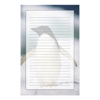 Adelie penguin, close-up stationery