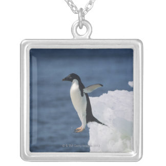 Adelie penguin leaping from iceberg silver plated necklace