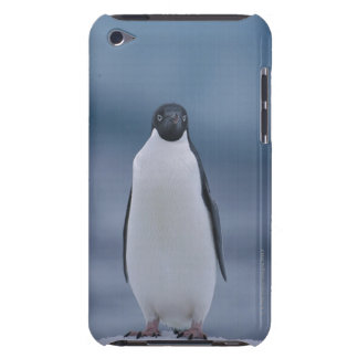 Adelie Penguin on Ice iPod Touch Cases