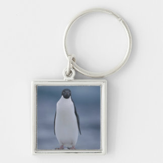 Adelie Penguin on Ice Key Ring