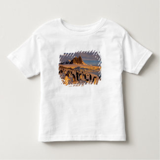 adelie penguin, Pygoscelis Adeliae, colony along Toddler T-Shirt