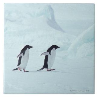 Adelie Penguins, Antarctica Large Square Tile