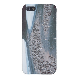 Adelie Penguins Covers For iPhone 5