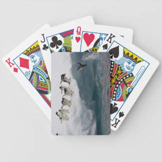 Adelie Penguins diving into sea Paulette Bicycle Playing Cards
