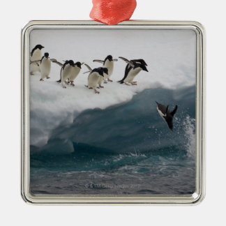 Adelie Penguins diving into sea Paulette Christmas Ornament