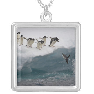 Adelie Penguins diving into sea Paulette Silver Plated Necklace