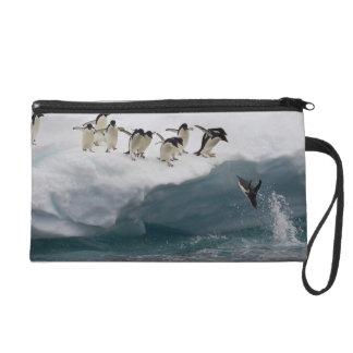 Adelie Penguins diving into sea Paulette Wristlet