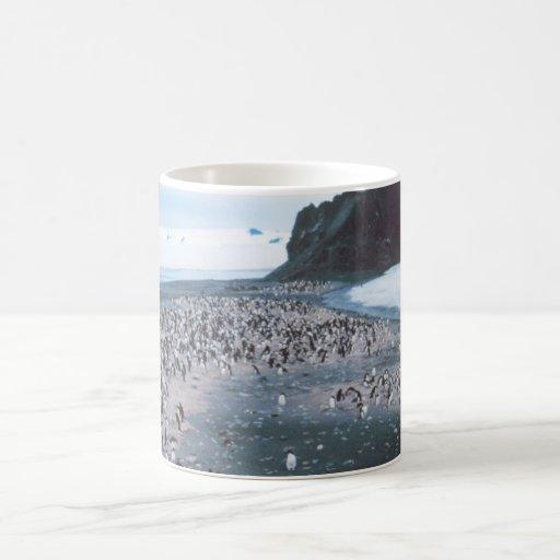Adelie Penguins Coffee Mugs