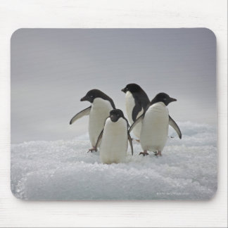 Adelie Penguins on Ice Flows Mouse Mat