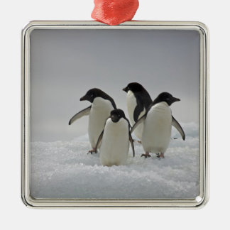 Adelie Penguins on Ice Flows Silver-Colored Square Decoration
