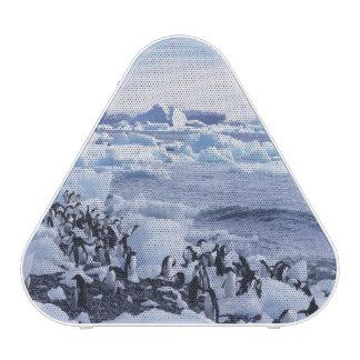 Adelie Penguins Pygoscelis adeliae) among the
