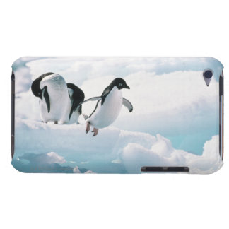 Adelie penguins (pygoscelis adeliae) Antarctica Barely There iPod Cover