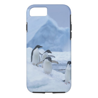 Adelie Penguins (Pygoscelis adeliae) on ice, iPhone 8/7 Case