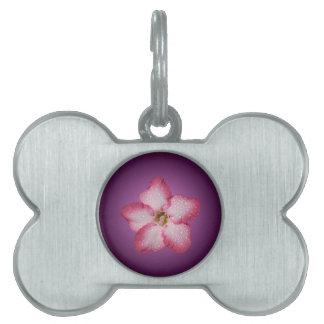 Adenium Pink Flower Flora Gradient Violet Pet ID Tags