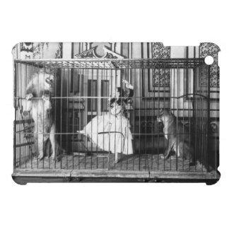 Adgie and Her Trained Lions Vintage Circus 1897 iPad Mini Covers