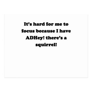 ADHey There s a squirrel Postcards