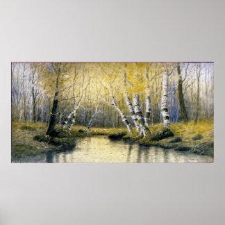 Adirondack Birches Poster