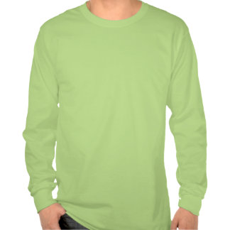 Adirondack High Peaks Long Sleeve T-Shirt (Green)