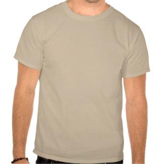 Adirondack High Peaks T-Shirt (Brown Logo)