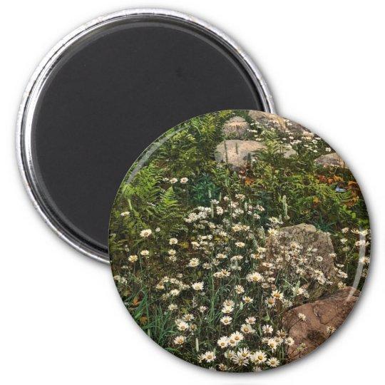 Adirondack mountain wild flowers rare Photochrom 6 Cm Round Magnet