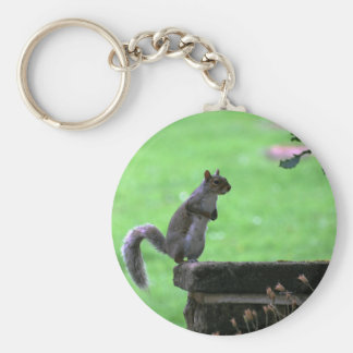 Admiring the view basic round button key ring