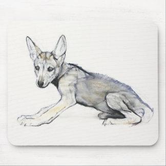 Adolescent Arabian Wolf Pup 2009 Mouse Mat