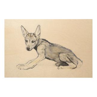 Adolescent Arabian Wolf Pup 2009 Wood Print