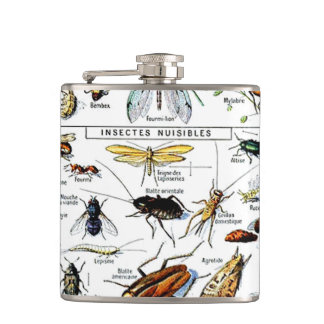 Adolphe Millot's Insectes Hip Flask