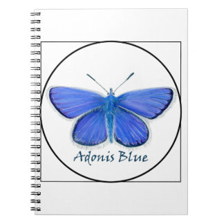 Adonis Blue Butterfly Watercolor Painting Notebook