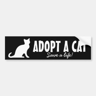 Adopt a cat bumper sticker | Animal welfare