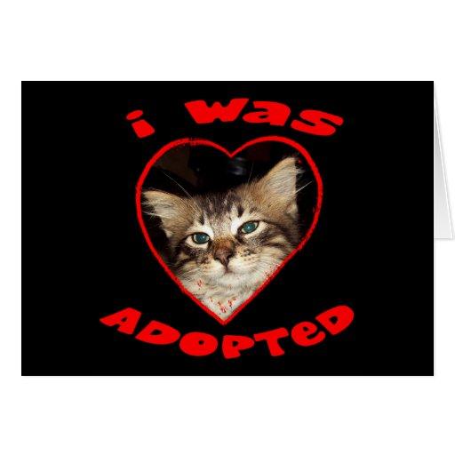Adopt A Cat Greeting Cards