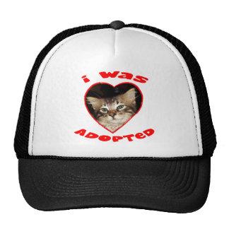 Adopt A Cat Mesh Hats