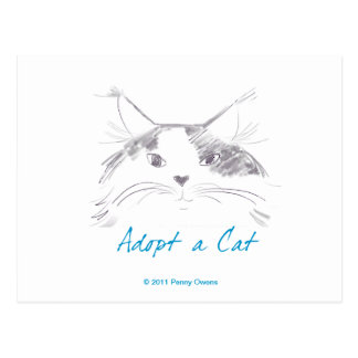 Adopt a Cat Post Cards