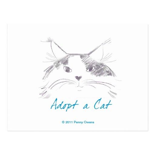 Adopt a Cat Post Cards