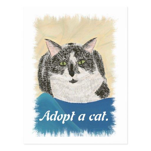 Adopt a cat promotion postcards