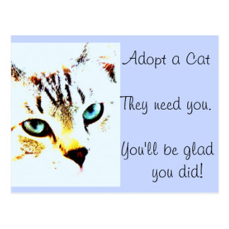 Adopt a Cat They Need You You ll Be Glad You Did Post Card