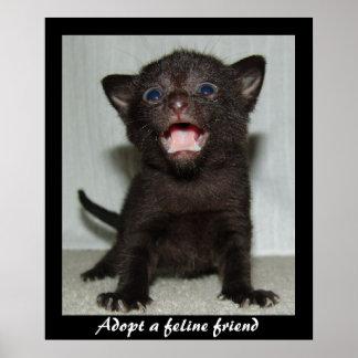 Adopt a Feline Friend Poster