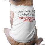 Adopt a Golden Retriever Dog