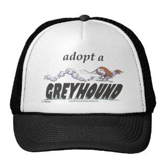 Adopt a Greyhound! Cap