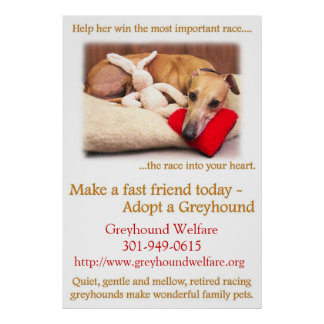 Adopt a Greyhound Print