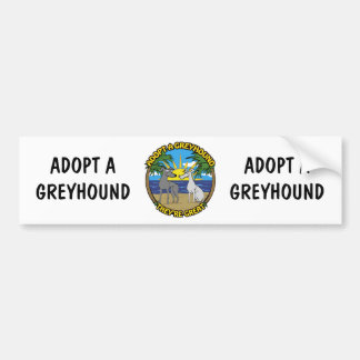 ADOPT A GREYHOUND THEY'RE GREAT BUMPER STICKER
