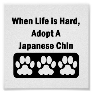 Adopt A Japanese Chin Poster