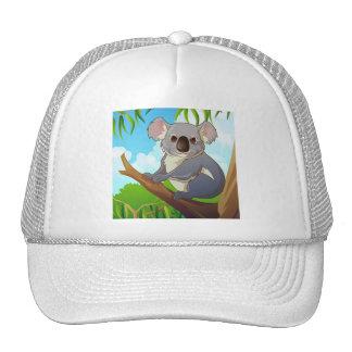 Adopt A Koala! Mesh Hats