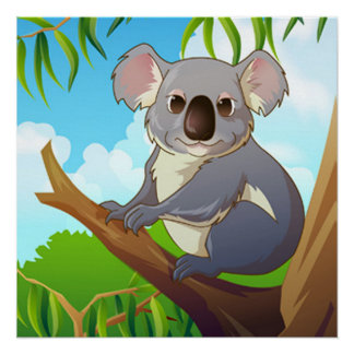 Adopt A Koala Poster